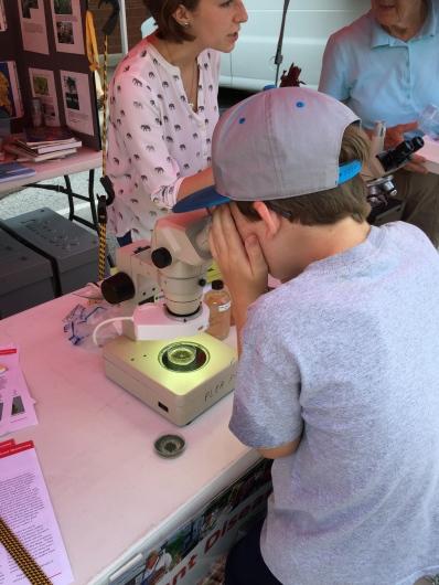 Chris checks out plant spores under microscope